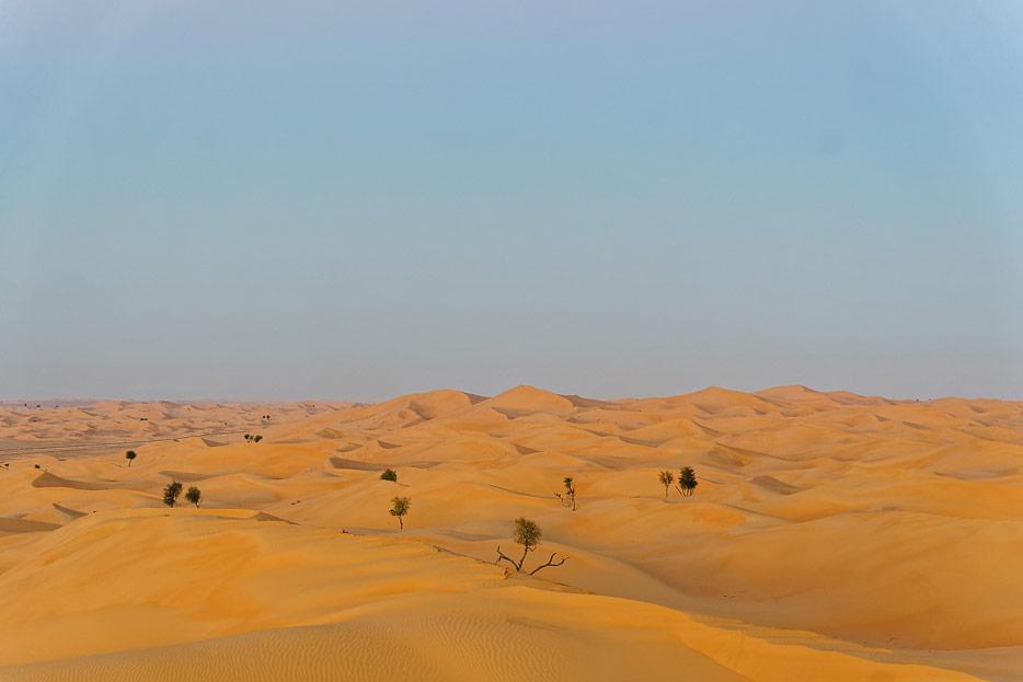 Wüste rund ums Camp
